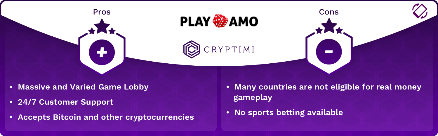 PlayAmo Pros and Cons Infographic